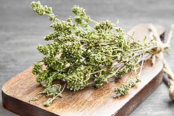 Thyme Culinary Herb