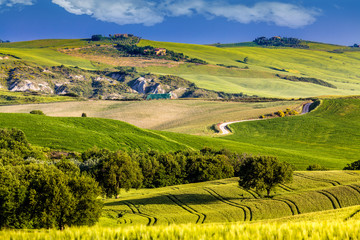 Wall Mural - Beautiful and miraculous colors of green spring landscape of Tus