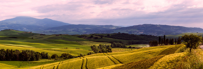 Wall Mural - Beautiful and miraculous colors of green spring panorama landsca