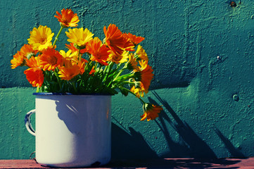 Yellow summer flowers in an iron white mug against the turquoise painted wall. Bouquet from a marigold. Calendula flowers. Festive bouquet in vintage style