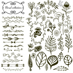 Hand-drawn floral big set with wild flowers, leaves, swirls, border. Vector with nature elements collection for design decoration