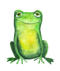 Frog. Watercolor