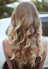 Healthy hair. Curly long hairstyle. Back view of Blond hairs. ha