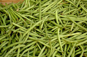 Haricots verts 158