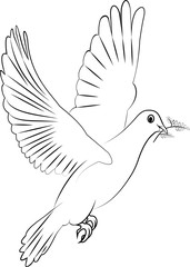 vector white dove of peace with a branch with leaves in its beak, in black and white