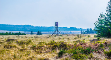 View over most famous national parc in belgium Hohes fannes/high fens/hautes fagnes