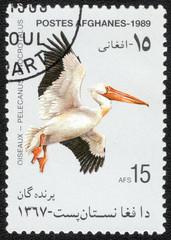 AFGHANISTAN- CIRCA 1989: