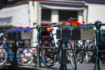 Bikes on the bridge with flowers in Amsterdam, Netherlands