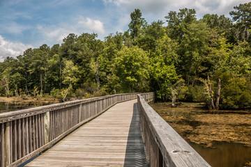 Bridge over swamp in Newport News Park, Newport News, Virginia