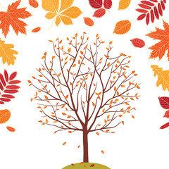 Autumn background. Autumn tree. Fall of the leaves. Sketch, design elements. Vector illustration.
