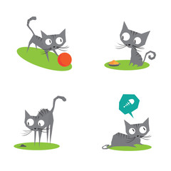 Collection of a four funny cats