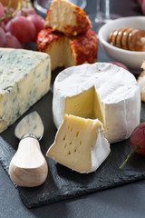 molded cheeses and snacks on the blackboard, vertical