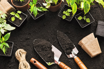 Foto op Canvas Tuin Gardening tools and plants