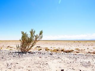 Obraz ボリビアの大地 - fototapety do salonu