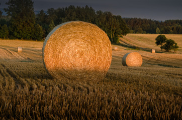 Fotoväggar - Erntezeit, Strohballen, Abendsonne