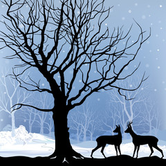 Snow winter forest landscape with deer. Abstract vector illustration of winter forest.