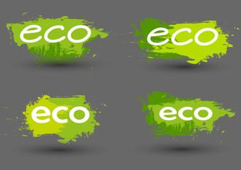 Ecology  friendly