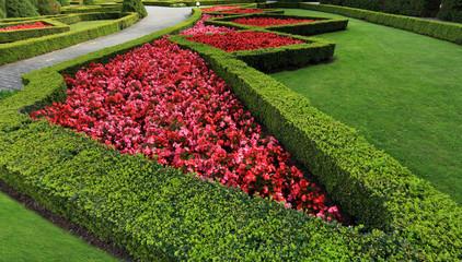 Piękny ogród, żywopłot i kwiaty w Licheniu Starym.