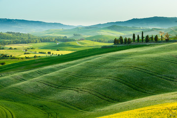Sunset over a spring landscape of Tuscany fields, Italy