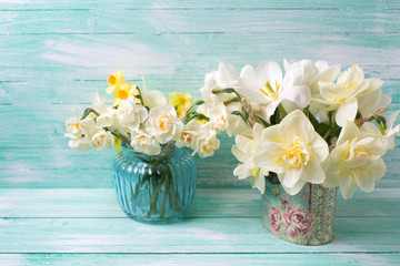 Background with colorful narcissus flowers in  vases