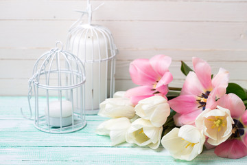 Background with  white and pink tulips.