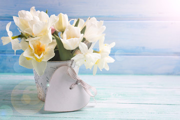 Background with fresh narcissus and tulips in bucket and decorat