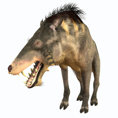 Entelodon Terminator Pig - Entelodon was an omnivorous pig that lived in Europe and Asia in the Eocene through the Oligocene Periods.