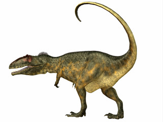 Giganotosaurus Dinosaur Tail - Giganotosaurus was a theropod carnivorous dinosaur that lived in the Cretaceous Period of Argentina.