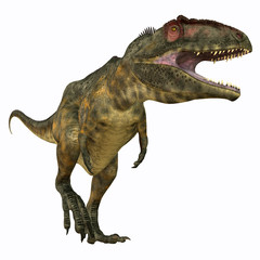 Giganotosaurus Carnivore - Giganotosaurus was a theropod carnivorous dinosaur that lived in the Cretaceous Period of Argentina.