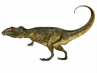 Giganotosaurus Side Profile - Giganotosaurus was a theropod carnivorous dinosaur that lived in the Cretaceous Period of Argentina.