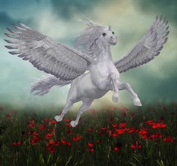 Pegasus and Red Poppies - A beautiful white Pegasus horse flies over a field of red poppies on wide spread wings.