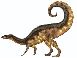 Plateosaurus Dinosaur Tail - Plateosaurus was a prosauropod herbivorous dinosaur that lived in the Triassic Age of Europe.