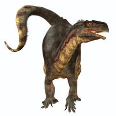 Plateosaurus Herbivore Dinosaur - Plateosaurus was a prosauropod herbivorous dinosaur that lived in the Triassic Age of Europe.