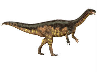 Plateosaurus Side Profile - Plateosaurus was a prosauropod herbivorous dinosaur that lived in the Triassic Age of Europe.