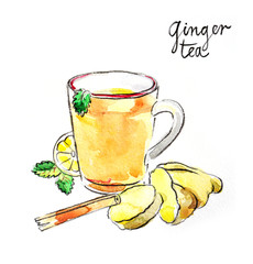 Watercolor ginger tea