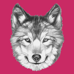Prtrait of Wolf. Vector isolated elements.