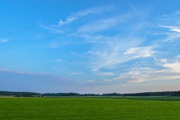 beautiful blue sky green field