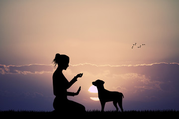 trained dog at sunset
