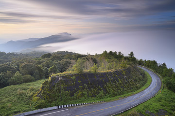 beautiful mist flowing on  at doi inthanon chiang mai