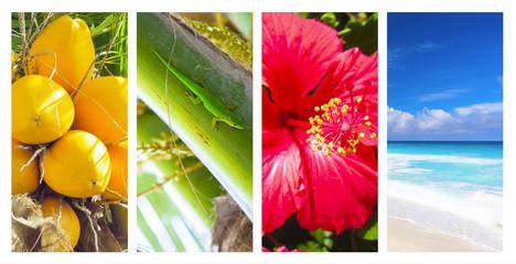 Seychellen Collage