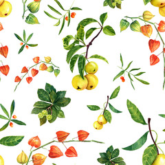 Watercolor physalis, apples and other plants seamless pattern