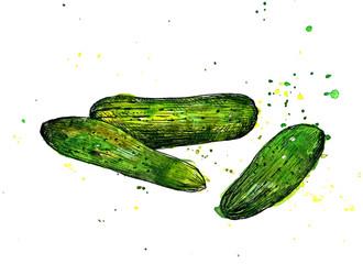 Hand drawn cucumbers