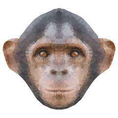 Head of a monkey in triangle style.