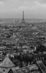 Paris XXV