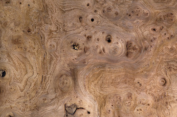 Wood grain texture, exotic veneer background