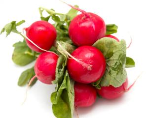 fresh radishes on a white background