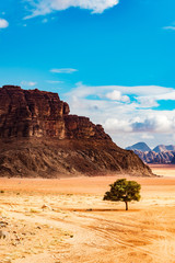 Jordanian desert in Wadi Rum, Jordan. Wadi Rum has led to its designation as a UNESCO World Heritage Site and is known as The Valley of the Moon.