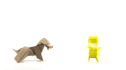 yellow boy and dog