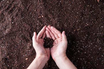 土と人間の手