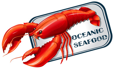 Lobster seafood can concept